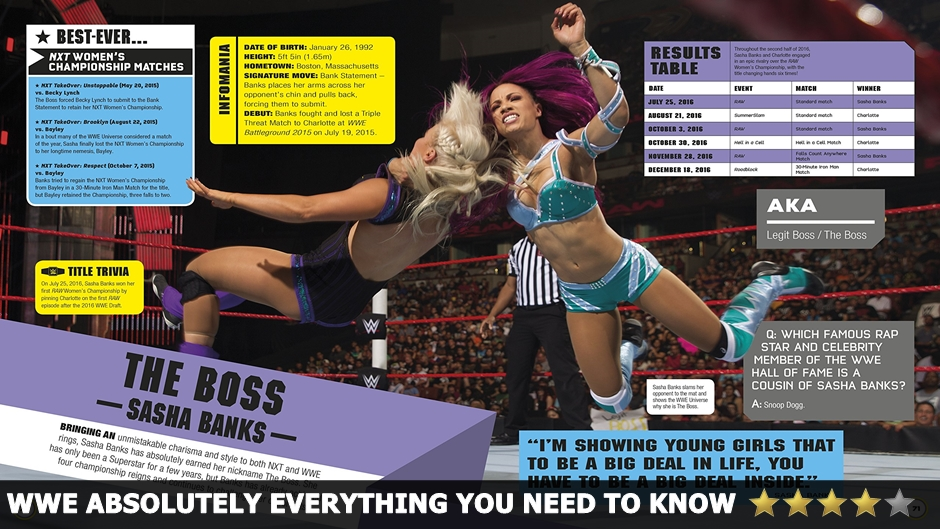 WWE Everything You Need To Know Review