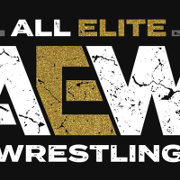 An Updated Look At The AEW Roster